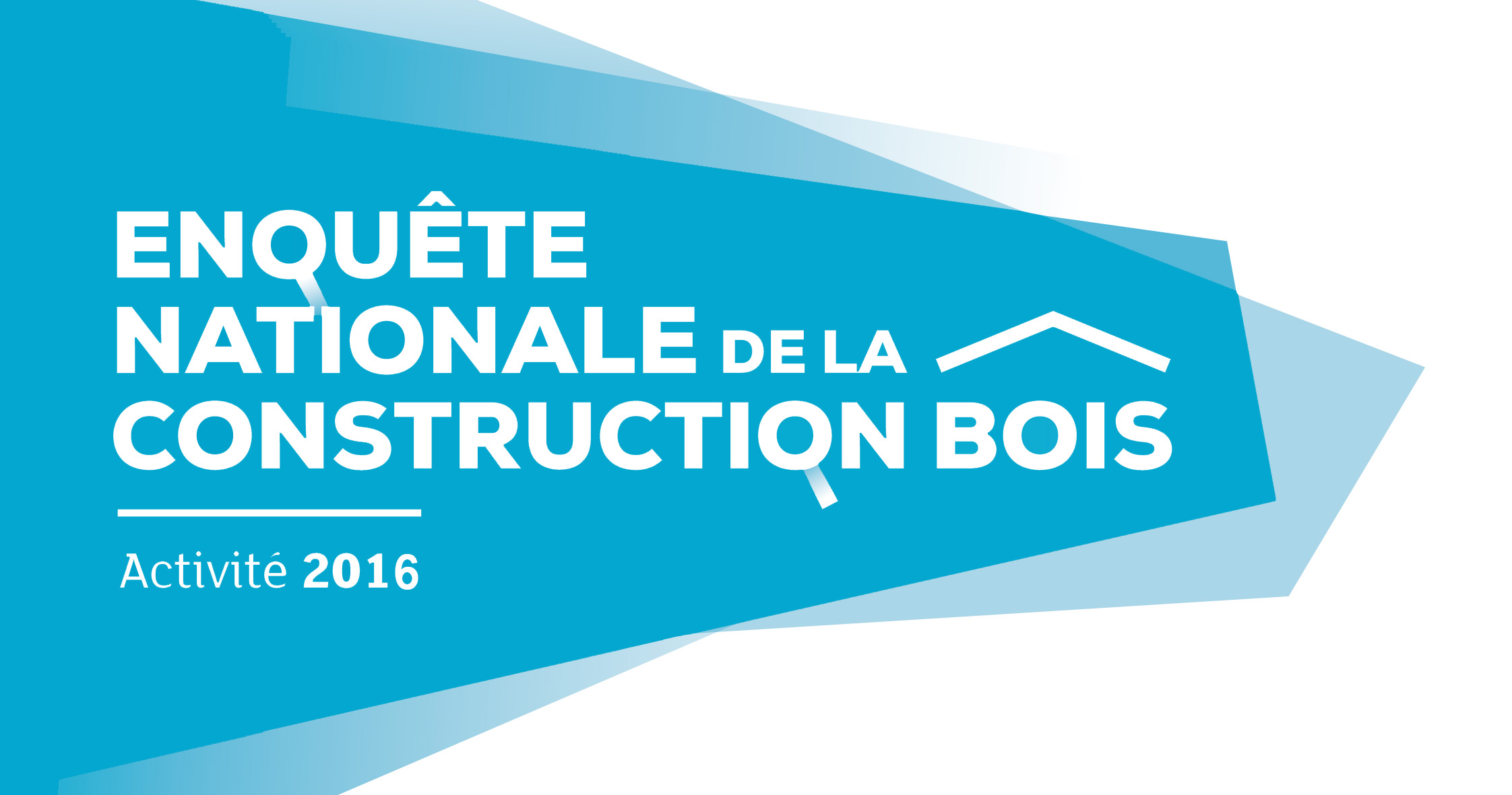 logo Enquete nat bois construction2016